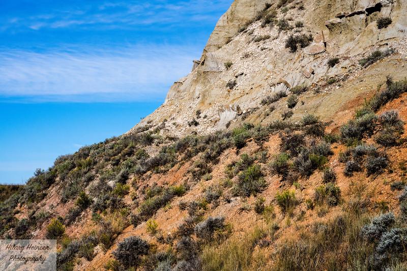 Theodore Roosevelt National Park-313.jpg
