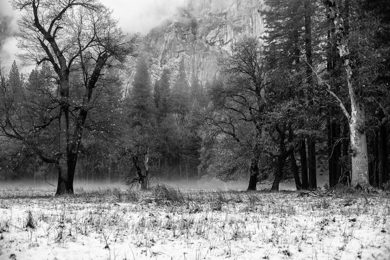 20141213_Yosemite_3s020.jpg