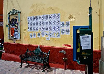 2015 mayo guanajuato