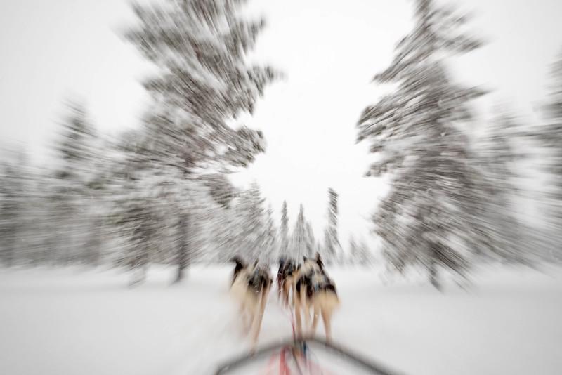 Finland_160116_42.jpg