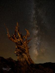 Easern Sierras