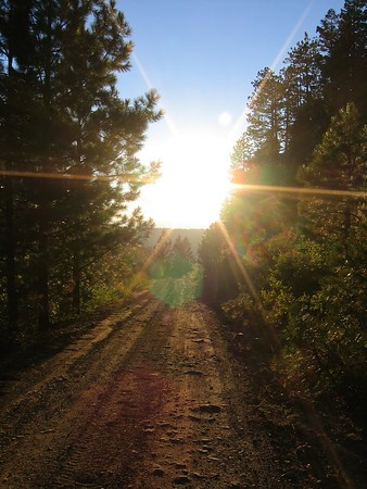 CHAPTER 11.  Idaho,through Payette National forest to Cascade Reservoir