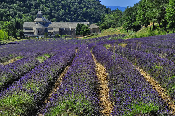 Provence, the South of France; Villages, Landscapes,People, and Culture