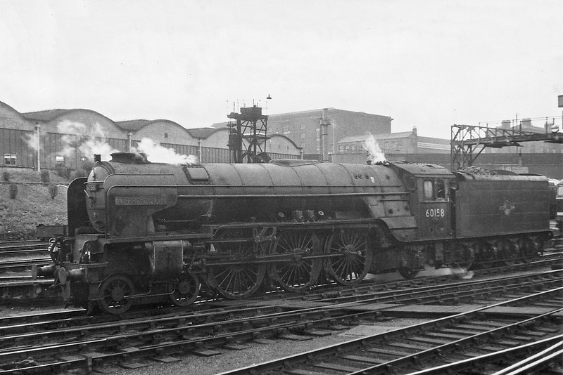 60s Steam Eastern