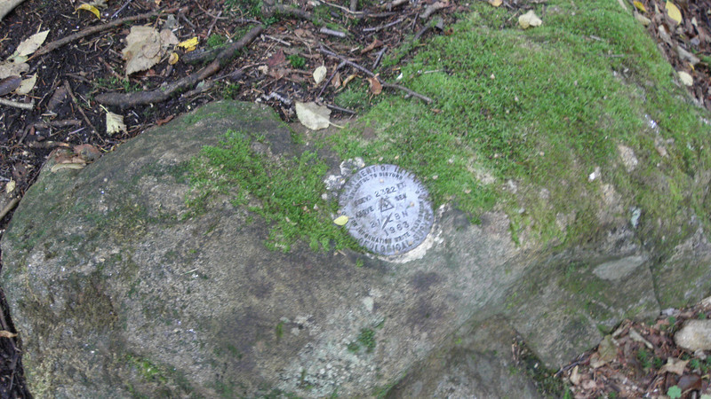 Stumbled on a benchmark at the junction.JPG