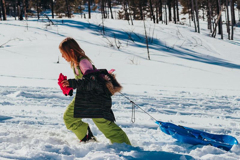 snowMLK-2390.jpg