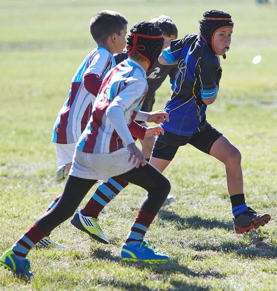 1217_09-Nov-13_RugbyOrcasitas.jpg