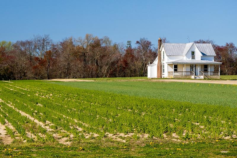 2021-04-18 - Little House on the (Vineland) Prairie.jpg