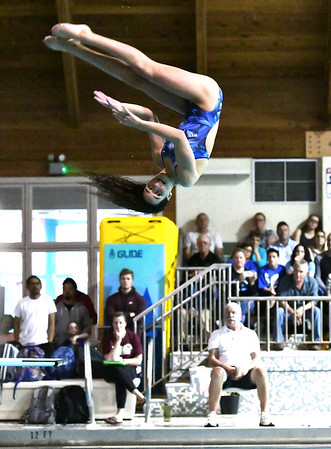 10/29/2019 Mike Orazzi | StaffrBristol Easterns McKenzie Aparoduring diving at Tuesdays girls swim meet with Bristol Central.r