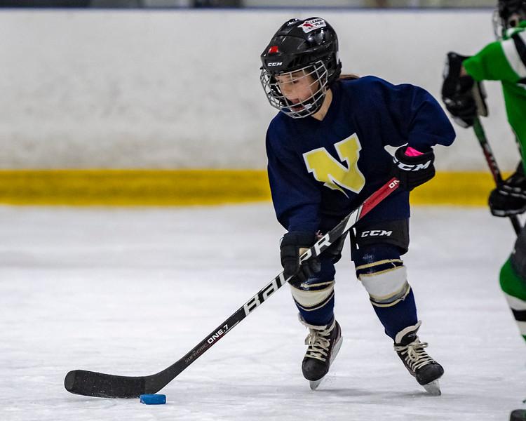 2019-02-04-Ryan-Naughton-Hockey-103.jpg
