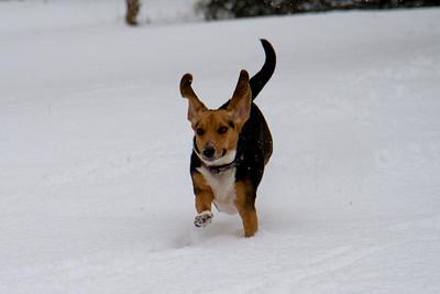 Jan 10 snow