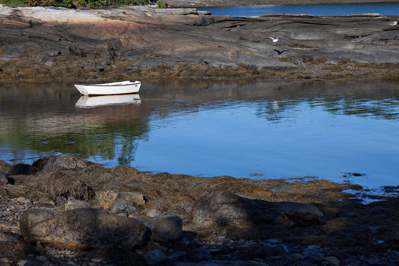 Harbor at Round Pond--Big Foot