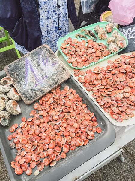 marseille fish market 6.jpg