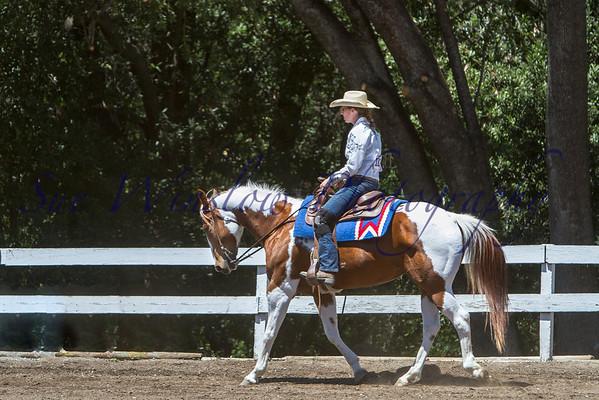 Ranch Horse Dressage