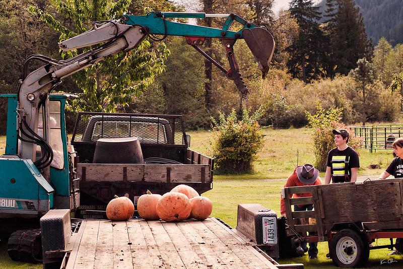 pumpkin fest 2011-full res