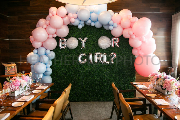 Brittany's Gender Reveal