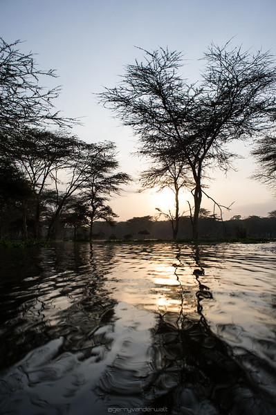 February - Naivasha