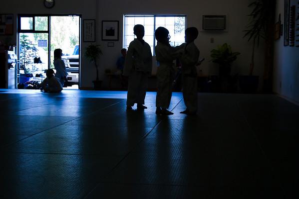 Kids Aikido Class