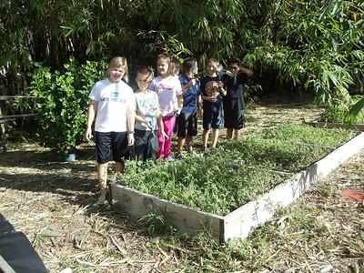 4th grade Gardening October 2011