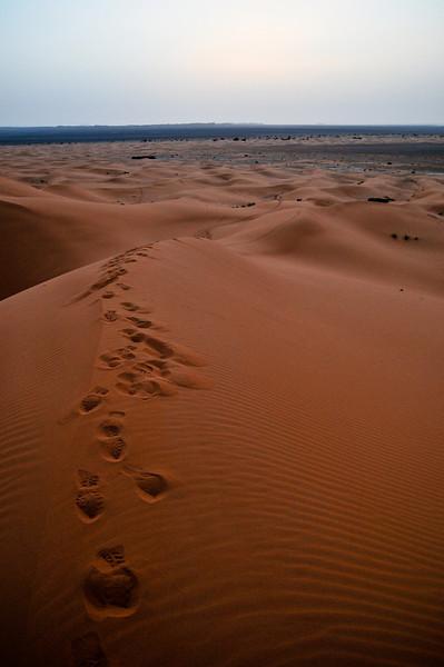 day4-SaharaCamp-47.jpg