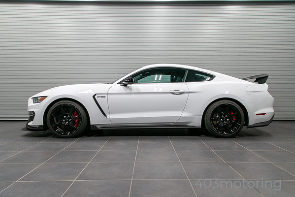 '17 Mustang Shelby GT350-R - Oxford White