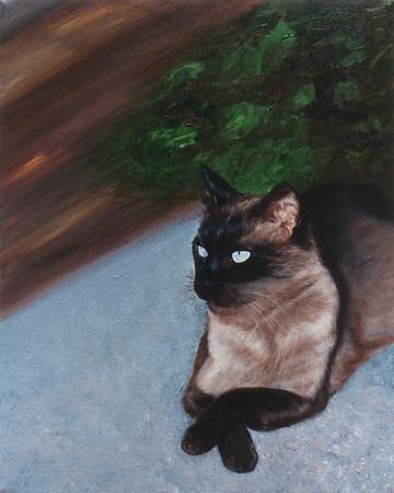 32-MARLEY'S-CAT.jpg
