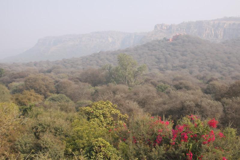 India 2013 2014 095.JPG