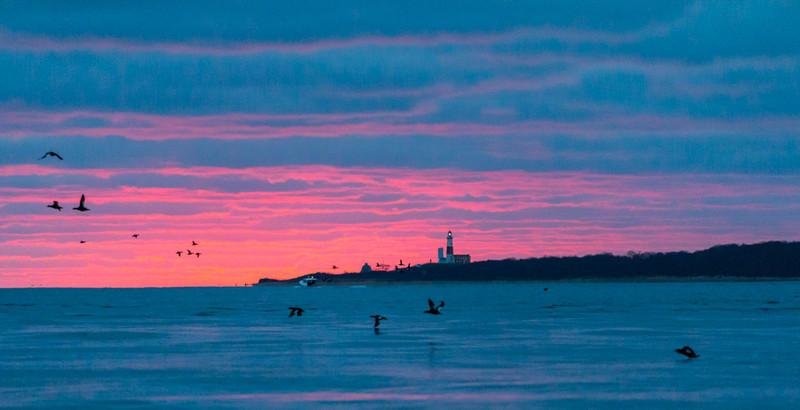 Long Island-117.jpg