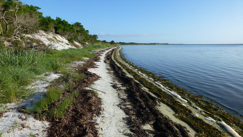 St Joseph Peninsula State Park, FL (August 9-11, 2013)