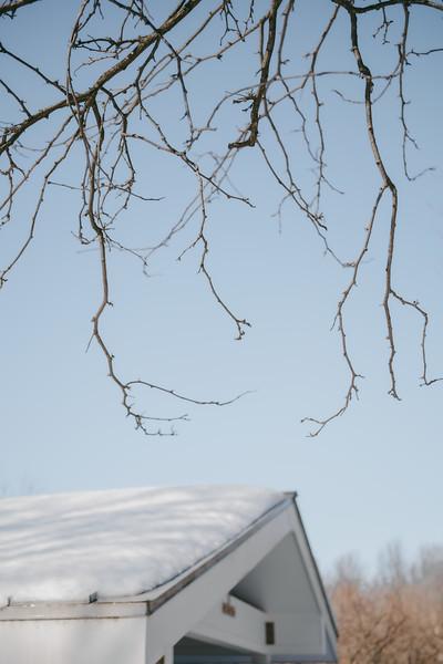 AVS_EcoPreserve_Winter2021-36.jpg