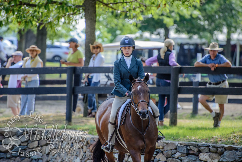 2014 Upperville Colt and Horse Show