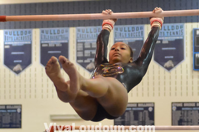 Gymnastics: Conference 14 Championship 2.7.14 (by Tom Lighton)