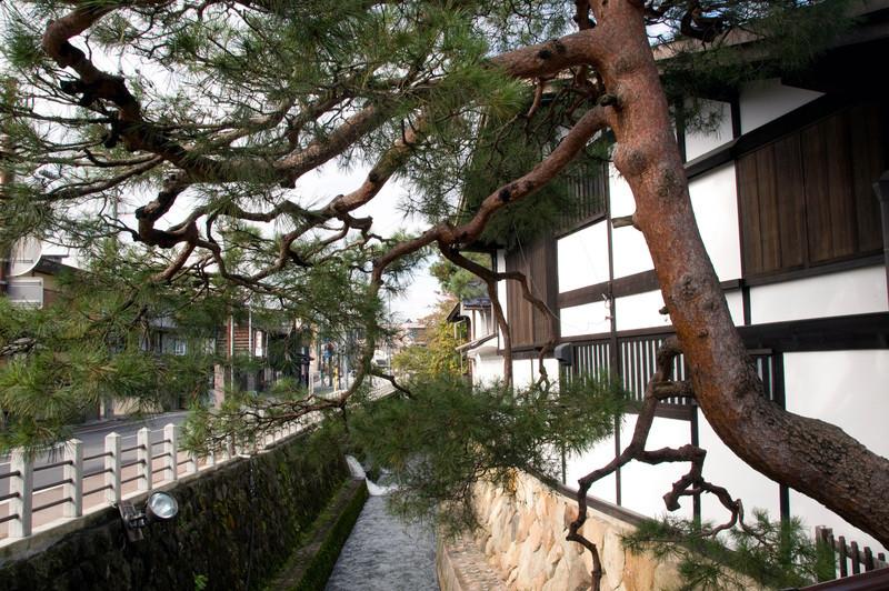 Japan_2010_NAT9435.jpg