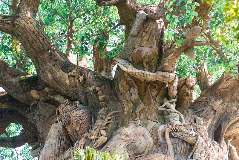 Tree of Life Animal Carvings - Animal Kingdom Walt Disney World