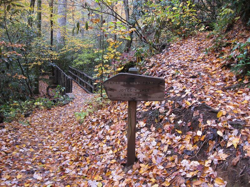 Joyce Kilmer Memorial Loop-Naked Ground Trail Junction