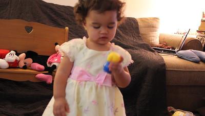 2011_FAMILY VIDEOS