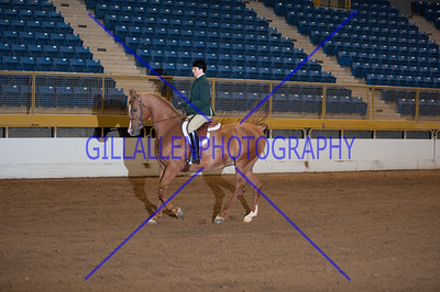2013 Fall Charity Horse Show Sep 7th PM