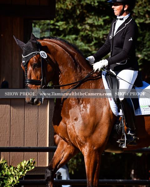 SVE 19 Hang On Oliver 4626.jpg