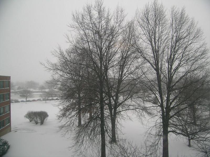 snow-feb1307-02.JPG