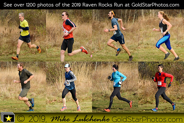 Mike Lubchenko 2019 Link