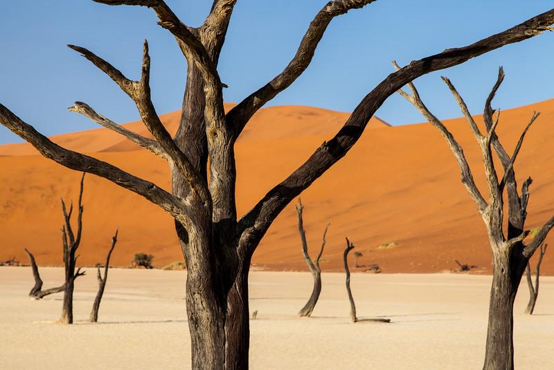 Namibia-32.jpg