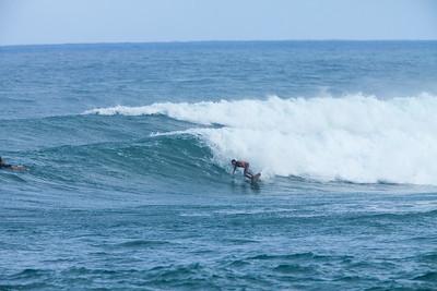 Surfers Gallery