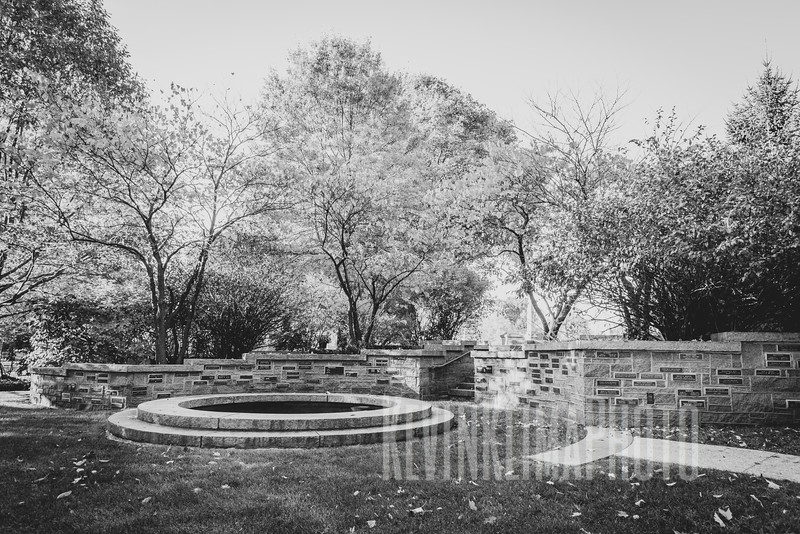 Graceland110218-250.jpg