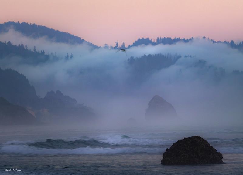 Ecola Point Fog