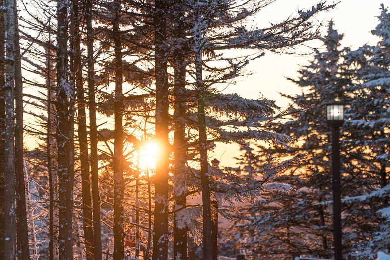 2019-12-06_SN_KS_December Snow-05263.jpg