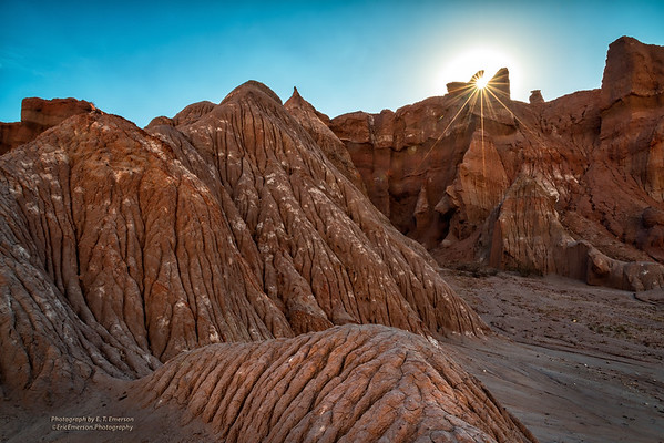 Puna de Atacama Photo Tour