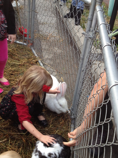 Petting two rabbits at once, was a treat.