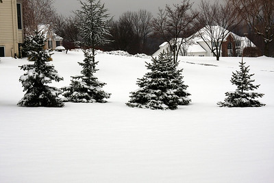 Snow-02222008