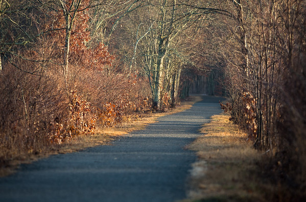 Airline Trail - Amston