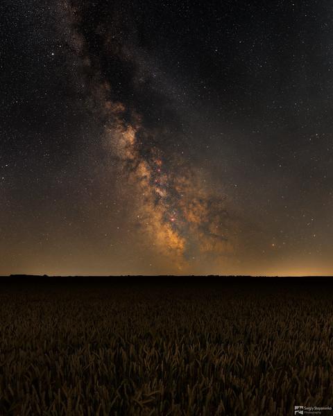 Among Night Field | В ночном поле